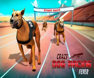 Crazy Dog Racing Fever : Dog Race Game 3d