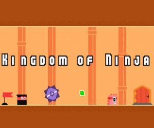 Kingdom Of Ninja