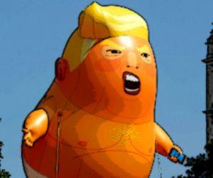 Trump Flying Adventure